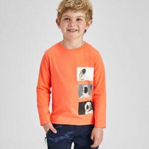 Camisas, Camisetas y Polos Niño